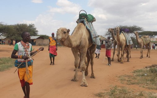 Via Lattea in Isiolo – support for Kenyan farmers
